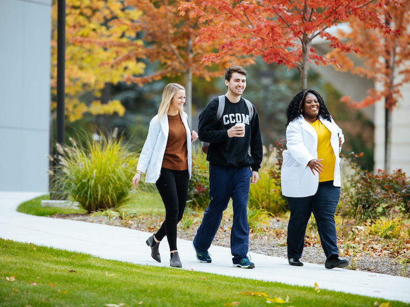 Students on IL campus in Fall