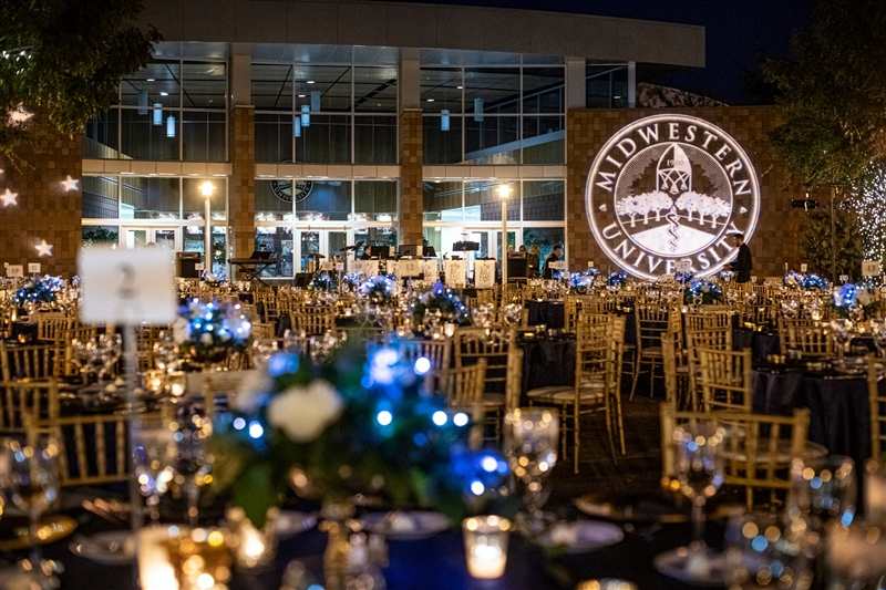 2019 Bright Lights Shining Stars gala
